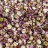 Wild Blueberry Popcorn